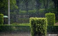 [顾亚恒日记7]最怕下雨淅淅沥沥的天气